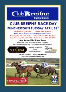 Limited places remaining for Club Breifne Raceday